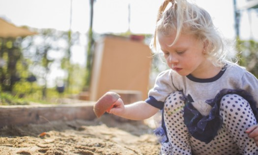 Ecological Identity at Wild Roots Preschool